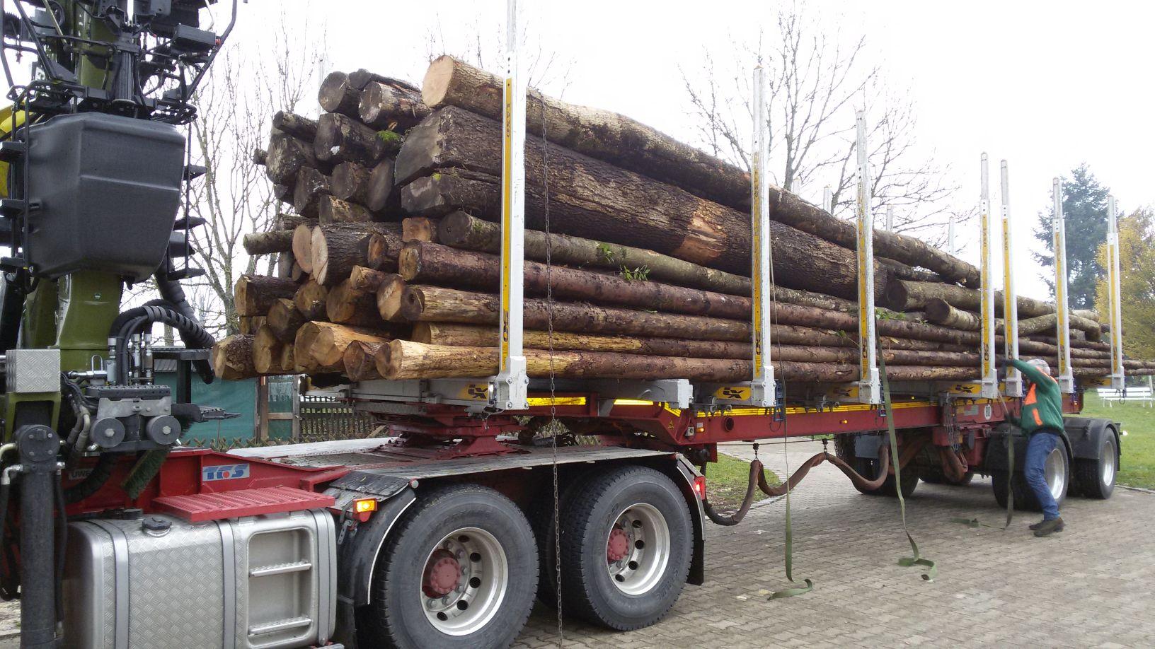 Holz- und Fahrspende