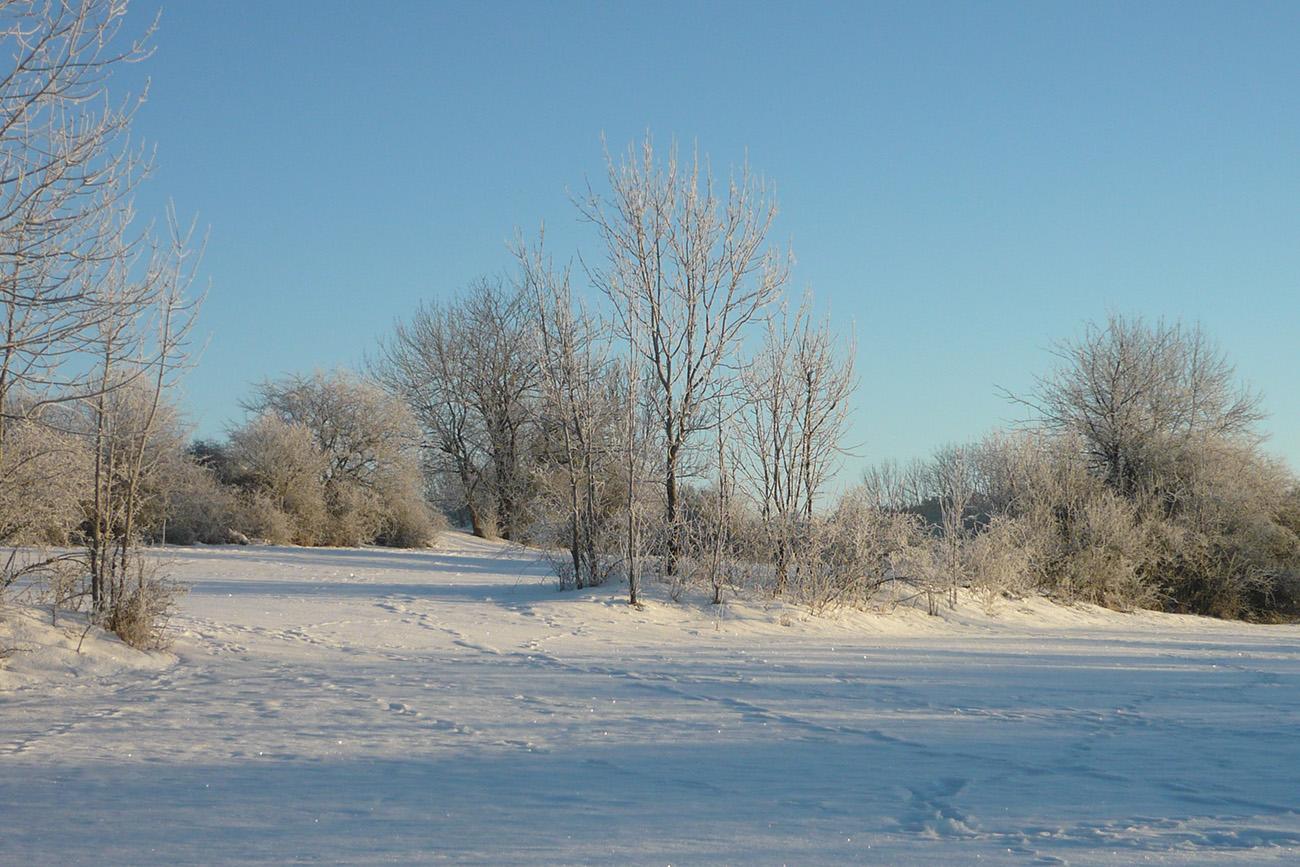 Lonsinger Kirchberg im Winter